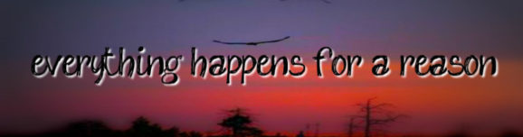 Blog 7: Everything happens for a reason